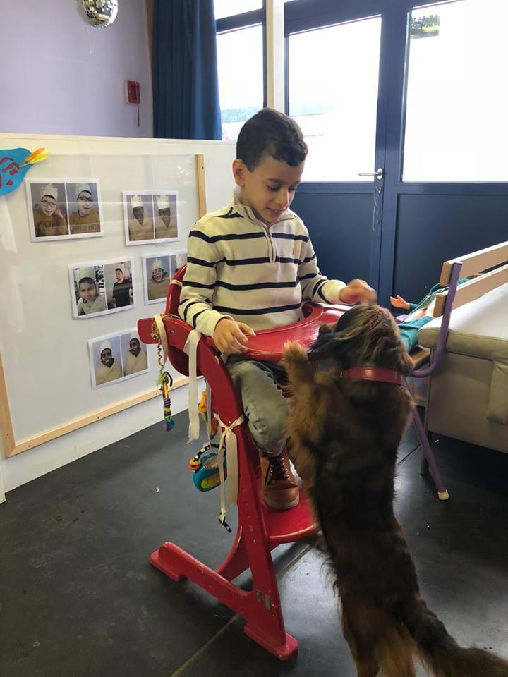 Hondje Habiba op bezoek in de lichtpaarse klas